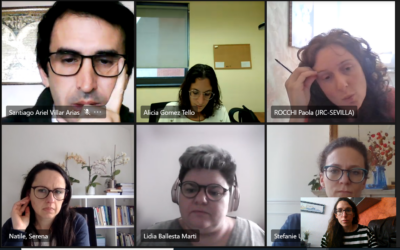 Online meeting with the Key Staff Members to organise the course 2021
